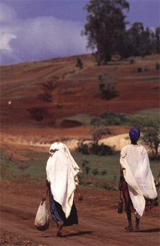 Women Walking Up A Red Path