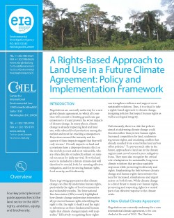 """Briefing Paper """"A Rights-Based Approach to Land Use in a Future Climate Agreement: Policy and Implementation Framework"""""""