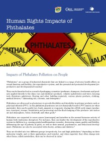 Pages from HR_Phthalates