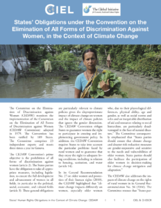 Read the report - States' Obligations under the Convention on All Forms of Discrimination Against Women, in the Context of Climate Change