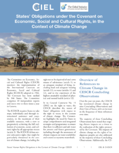 Read the report - States' Obligations under the Convention on Economic, Social and Cultural Rights, in the Context of Climate Change