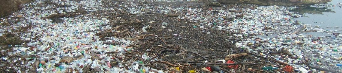 Legal Petition Seeks Ban on Plastic Pollution From